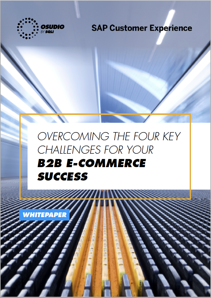 WP PREVIEW_4 KEY B2B E-COMMERCE CHALLENGES